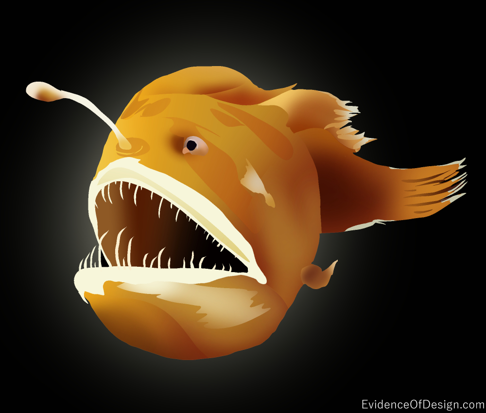 This Beast is NO BEAUTY. But if we look closely, it does show amazing design. Find out how in our article. Just click the picture. #anglerfish #fish #science #creationscience #creation #design #evidenceofdesign #scientificevidence #facts