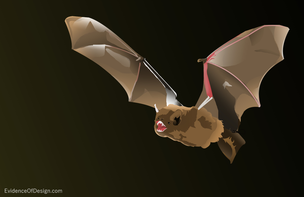 Everyone's supposed to know that bats are pretty much just a nuisance, But are they really? Find out the truth by clicking on the picture above.
