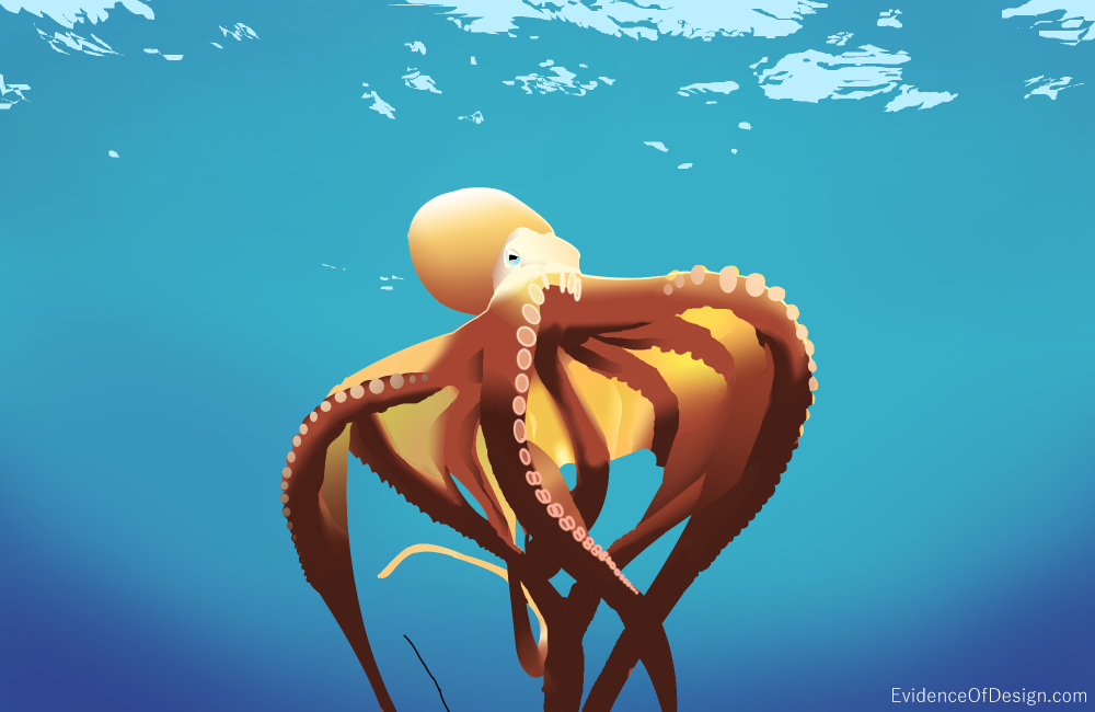 Everyone takes the Octopus for granted. There is nothing really special about it. Right? WRONG. Check out how wrong you have been by clicking the picture.