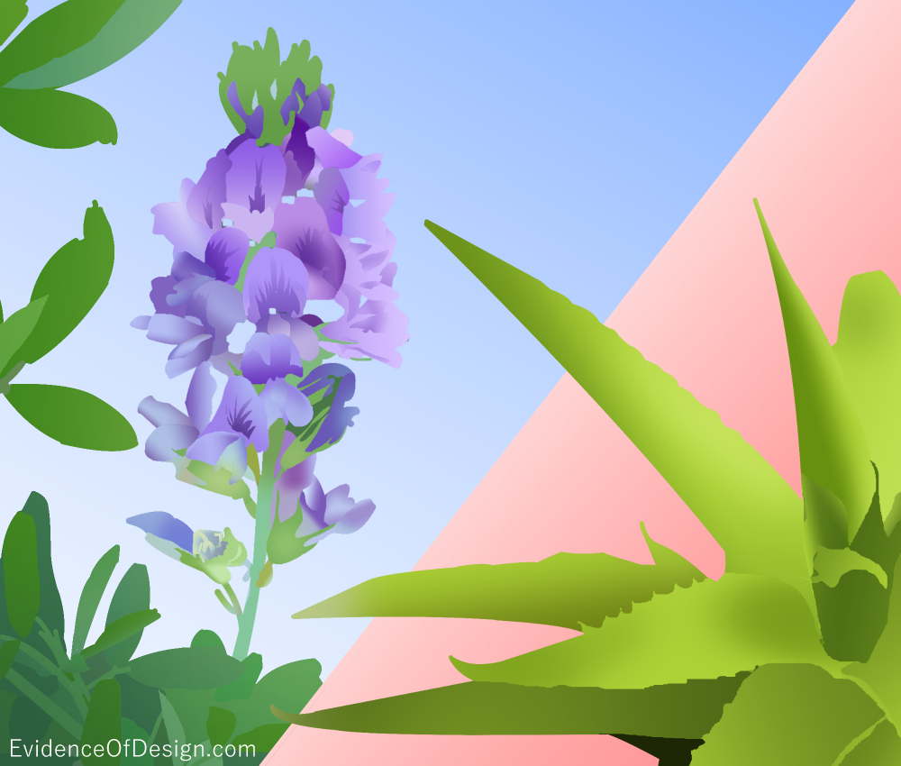 You have NO IDEA how many uses God has given His plants for our benefit! Check out some of them by clicking above. #herbs #plants #godsdesign #evidenceofdesign #evidence #EOD #aloevera